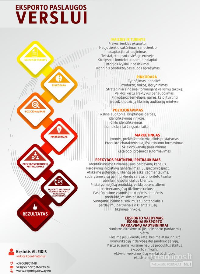 Pasirinkimo strategijos analizė - Darbų pavyzdžiai