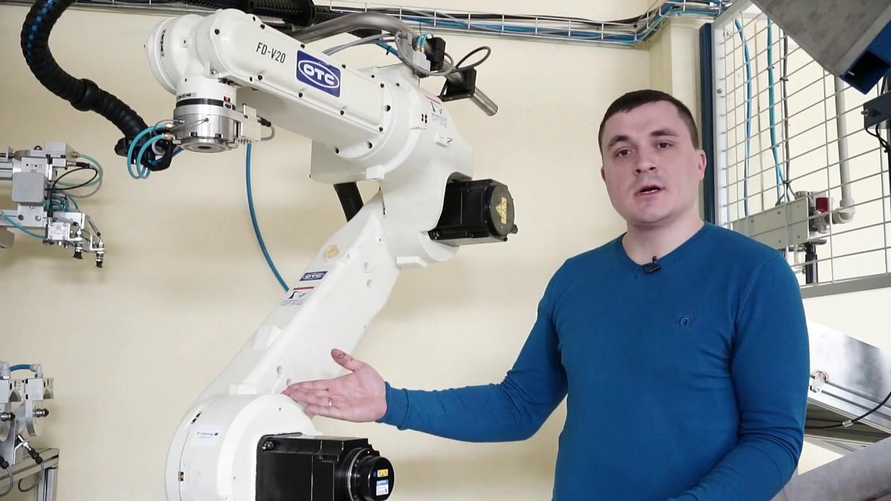 Elly robotas variantų apžvalgos
