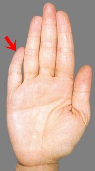 Ką rankų pirštai pasako apie jūsų asmenybę