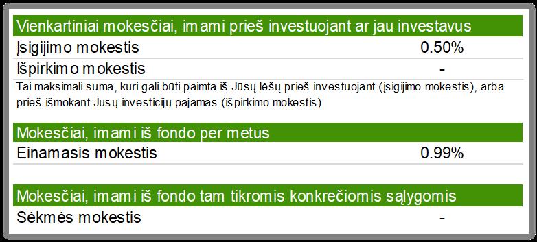 strateginių investicijų pirkimas