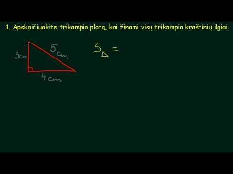 tendencijos linijos skaičiavimo formulė 100 signalų už pasirinkimus