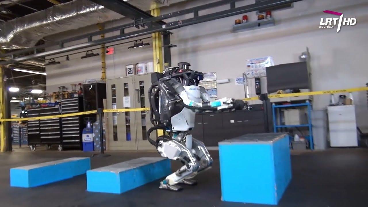Ekspertai patarėjai | Forex robotas - RoboMarkets Poros prekybos robotas