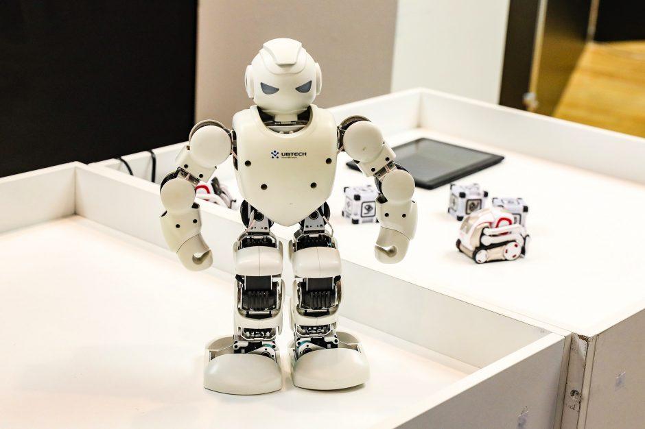 Vejos robotas 28V Grizzly MR - lgpf.lt