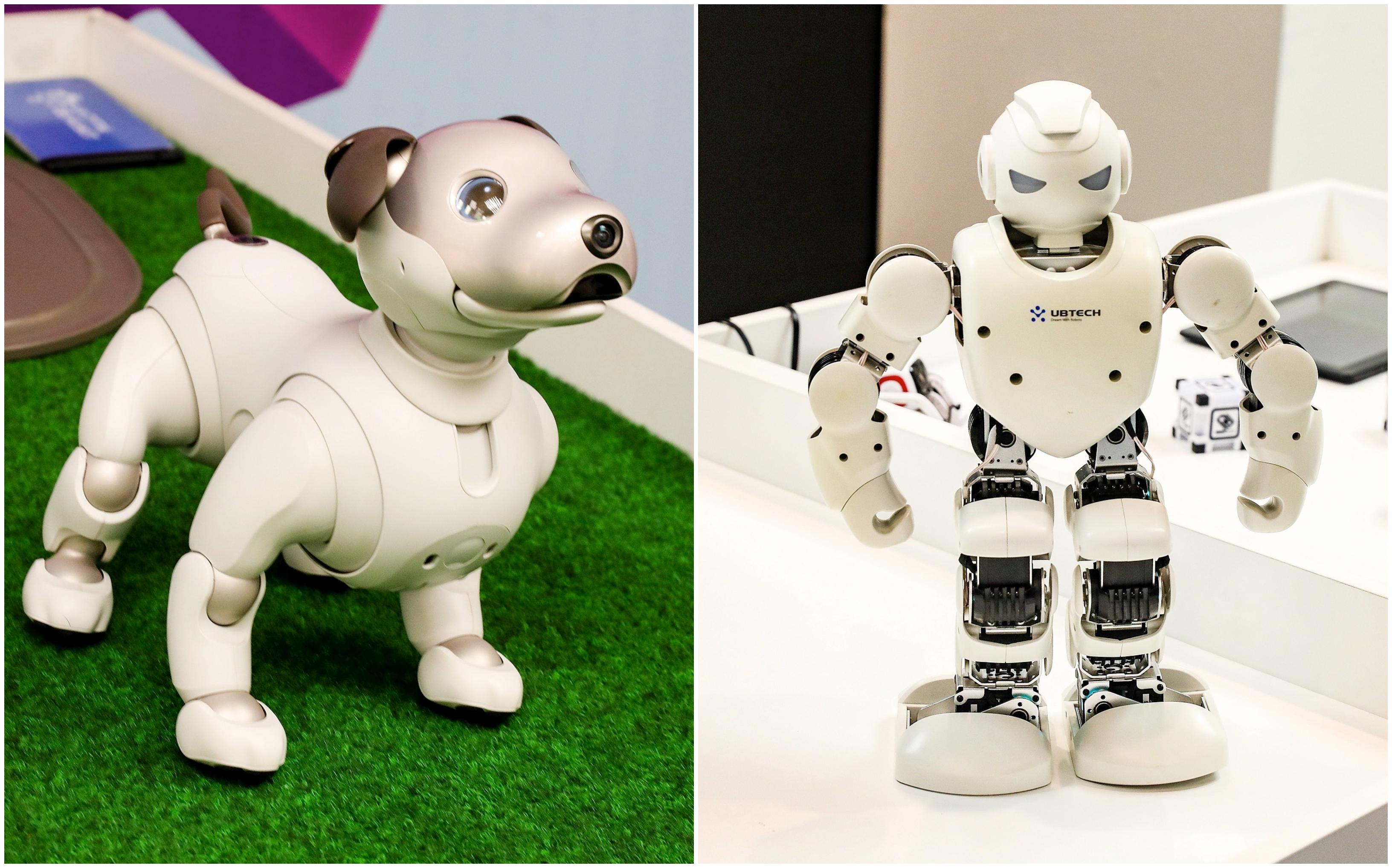 Automatinė prekyba - išsamūs pamąstymai apie Forex robotus